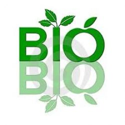 Bio cleaning in home Budapest / Pest Country
